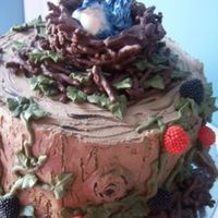 Bird Cake Tree stump with bird nest and bird with eggs. You can't see a second bird on the side of the tree, the pictures were too blurry. The...