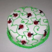 Ladybug Cake This is my attempt at the ladybug cake. I saw it on here, by normal_lady, and thought it was the perfect cake for a friend. Its chocolate...