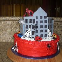 Spider Man Cake I had so much trouble with this cake, but the kids loved it.