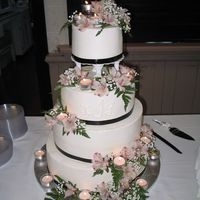 Candlelight Beauty   Chocolate and white cake frosted in buttercream with black ribbon accent.