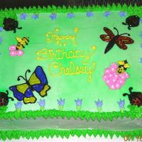 Springtime Cake  For a little girl's birthday. Dragonfly and Butterfly made with piping gel. Flowers made from BC. Border with leaf tip. Bees made from...
