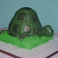 "Pete The Turtle WASC, Buttercream, MMF1/2 ball pan, 2 - 8"" rounds, 10"" squarebaked, iced and decorated in 5 hours"