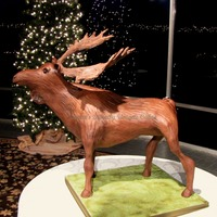 Chocolate Moose 3D cake on pvc armature. all buttercream, airbrushed...and almost too tall to fit in the back of my car. We had to tip it slightly to get...