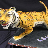 3D Tiger Cake This 3D tiger cake on pvc armature was made to take step by step pictures for a sculpted cake class that I taught in Baton Rouge. It was a...