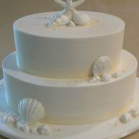 Wendy's Cake 9 x 6 and 12 x 9 oval chocolate cake layers filled with raspberry filling and iced with buttercream. White chocolate seashells dusted with...