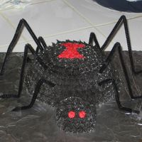 Spider Cake This is 1 of 2 cakes I made for my daughter for her birthday. She wanted a Halloween/spider theme. The body is made with the Wilton sport...