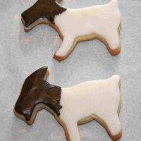 Boer Goats I raise Boer goats and just had to try out my new goat cookie cutter :). NFSC with RBC.