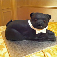 Mary Ann chocolate cake with raspberry filling. i don't know how people cut into cakes that look like their pets! thanks for looking!