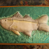 Snook Fish Cake The groom is an avid snook fisherman, a fish that is found off the gulf coast of Texas. The bride requested this cake for him as a surprise...