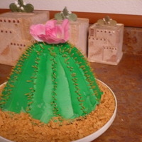 Barrel Cactus  My mom is into the southwest stuff so me and my 6 year old daughter made this for her birthday. I used the Wilton wonder mold doll pan and...