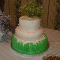 Grass Shower Cake This is a cake for my sister in laws shower. White and Strawberry cake with MMF.