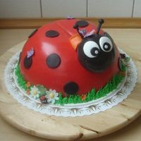 Ladybird This cake I made for a litlte girls first birthday. It is a chocolate cake filled with raspberry mousse and covered in 50/50 marzipan/...