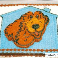 Bear In The Big Blue House My Grandson's first birthday.... No pan, had to cut out the bear and put on top.
