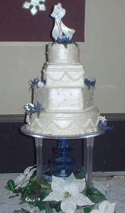 "Rouse-Shoop Wedding  This cake is a 14"" round, 12"" hex, 7"" square and 6"" round. All iced in buttercream with mmf pearls, poinsettias, royal..."