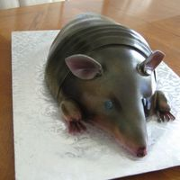Red Velvet Armadillo Red velvet cake covered in fondant & airbrushed.