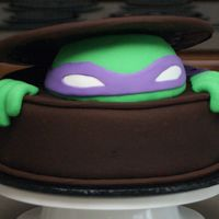 Ninja Turtle-Front Teenage Mutant Ninja Turtle cake for child's birthday party. Cake is chocolate with vanilla bk and dark chocolate Satin Ice fondant (...