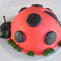 Ladybug Smash Cake buttercream icing with toothpick antennae
