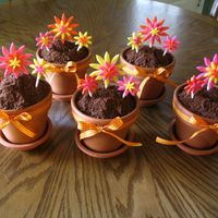 "Flower Pot Cakes Chocolate cakes baked in 4"" clay flower pots, with chocolate icing and crushed up chocolate Teddy Grahams for the ""dirt"". I..."