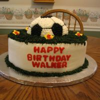 "Soccer Birthday 2 layer, 12"" round white cake with buttercream icing. The grass is actually dark green, but looks black in the picture. The soccer..."