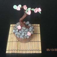 Bonsai Cupcake Contest entry on another site. (won) I had a lot of fun with this. Everything is fondant. Used a nut cup that was painted with a mix of...