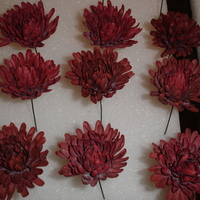Mums   Made these for the wedding cake of an Opera star. Hardest flowers I ever made because of how they need to dry.