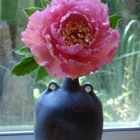 Peony Just finished this peony. Thought it came out pretty good. Now all I need to do is design a cake for it. LOL