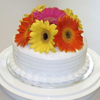 Gerberas Cake for 40th Anniversary