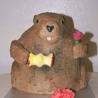 Groundhog Day  This was done for a customer with a groundhog day birthday. He is yellow cake with whipped chocolate icing. The additional coloring was...