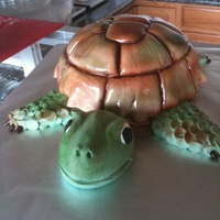 Turtle 3d carved turtle cake