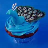 Peacock Cupcake I did this for the Georgia ICES day of sharing. They had a contest, and this won first place for cupcakes!