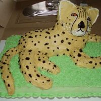 Cheetah.jpg This is a cheetah that I made for my niece's 7th birthday, using the stand up lamb pan. The tail, legs, ears and some of the face are...
