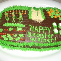 Garden Cake Didn't turn out as well as I hoped but it was fun. Chocolate syrup frosting.
