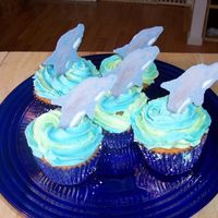 "Dolphin Cupcakes Made for my daughter's class during ""ocean week"". Chocolate dolphins in buttercream icing."