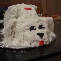 Doggie Cake First 3-D sculpted cake. Tried to look up the instructions for a maltese cake, but the link didn't work, so I had to 'wing it&#...