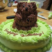 Groundhog  Friends sister was born on Groundhog's Day. Groundhog is made from the mini stand up teddy bear pan and then carved to resemble (...