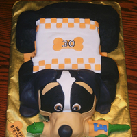 University Of Tennessee This is a 3-D cake of Smokey, the University of Tennessee mascot. He has a chew-toy of their rival school, University of Florida's...