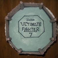 Ufc Octagon Cake   Birthday cake for the future ultimate fighter!
