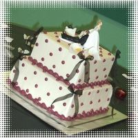Square Polka Dot Cake Choc. cake with cherry filling, decorated with BC icing.