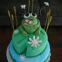 Frog This was for a little girl that was about to get a little sister. The family wanted a party for her to not feel so left out. Cute huh? The...