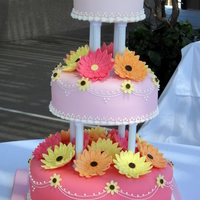 Spring Wedding Cake   50/50 gerber daisies, white chocolate fondant covered cakes; red velvet, Devil's food, white chocolate flavors. TFL