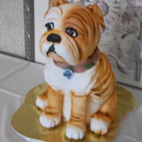 Bulldog Groom's Cake Carved out of cake, covered in white fondant and then airbrushed.