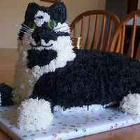 Oreo The Cat For DS 10th BD, milk choc cake, a replica of one of our 4 cats, did another one also in French Vanilla of another cat that is almost...