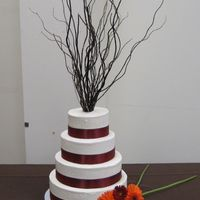 Wedding Cake This was a chocolate cake with white buttercream and wine colored ribbon. It was a fall themed wedding so we used tree branches as a topper...