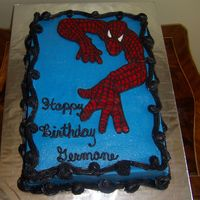 Spiderman FBCT