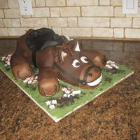 Horse Thanks to CC'ers for the idea for this cake!