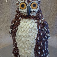 "Brown Owl Chocolate cake with banana filling, covered in BC. The eyes and beak are fondant. I made this out of 2-6"" rounds, half a ball and a..."