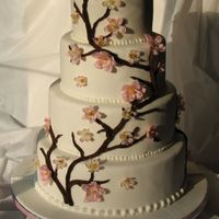 Cherry Blossoms Top cake french vanilla, filling bav. creamnext chocolate, filling strawberrynext marble, filling bav. creambottom chocolate, filling bav....
