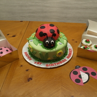 Ladybug First Birthday   Used the invitation as the theme for the main cake and the smash cake and the cupcakes