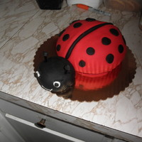 Ladybug Smash Cake  A 3d Ladybug smash cake I made in addition to the sheet cake. Body was baked in mixing bowl & head is a cupcake. All fondant. except...