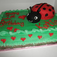 Ladybug 1St Birthday   Sheetcake is all buttercream. Ladybug body was baked in a mixing bowl & the head is a Hostess cupcake. Both were covered in fondant.